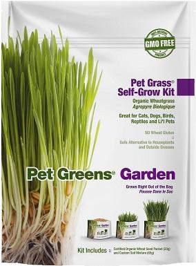 1Pet Greens Self Grow Garden Pet Grass