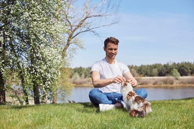 Joyful male touching his pleasant cat while having a rest on grass