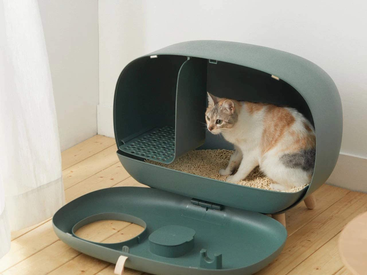 cat inside Sikoon MS Cat Litter Box