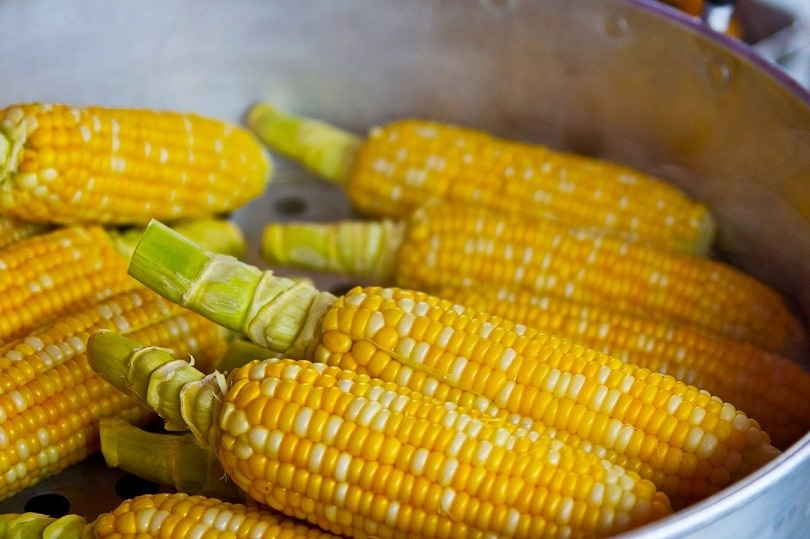 pop-corn-pixabay