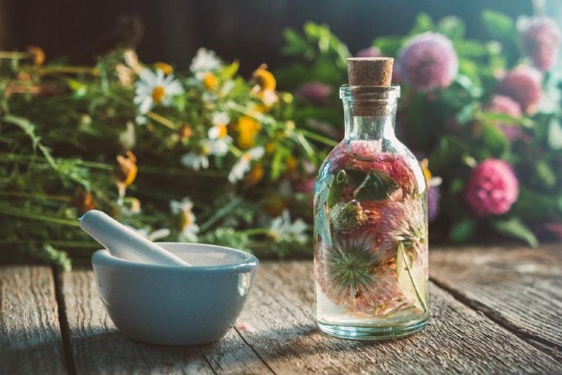 preserving flowers