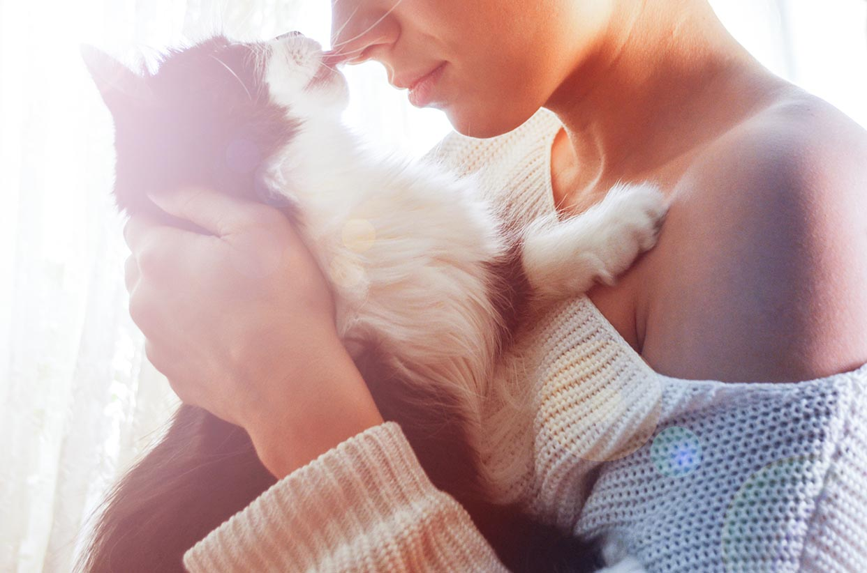 cat licking the nose of the woman
