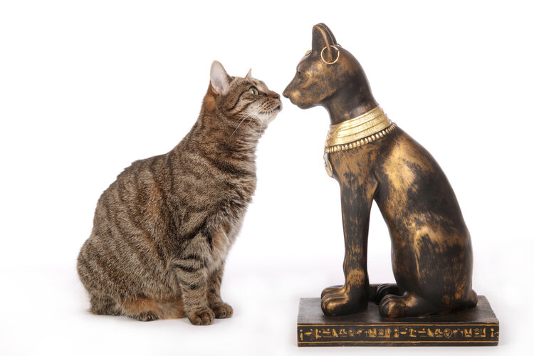 cat with egyptian statue