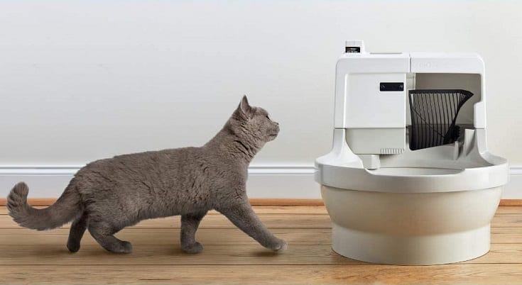 CatGenie A.I. Self-Washing Cat Box - Latest Model