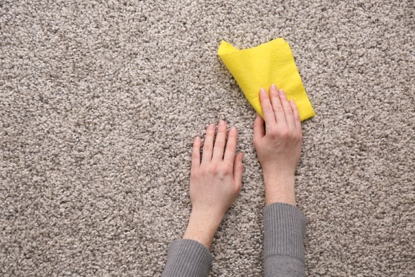 Female hands with rag on carpet