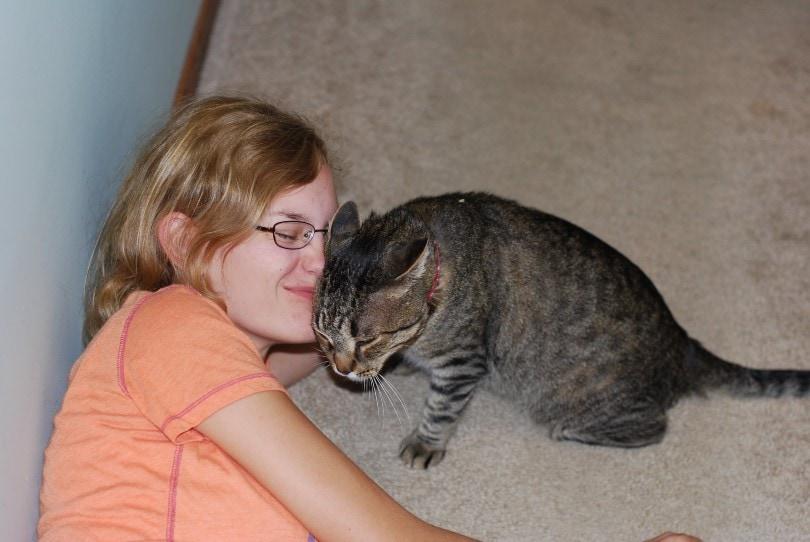 a tabby cat head bunting on a girl