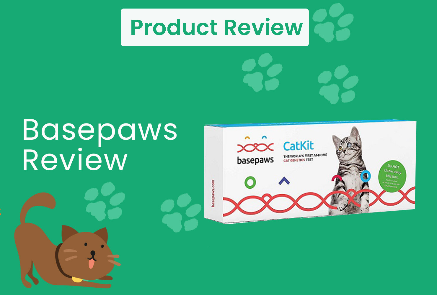 basepaws review