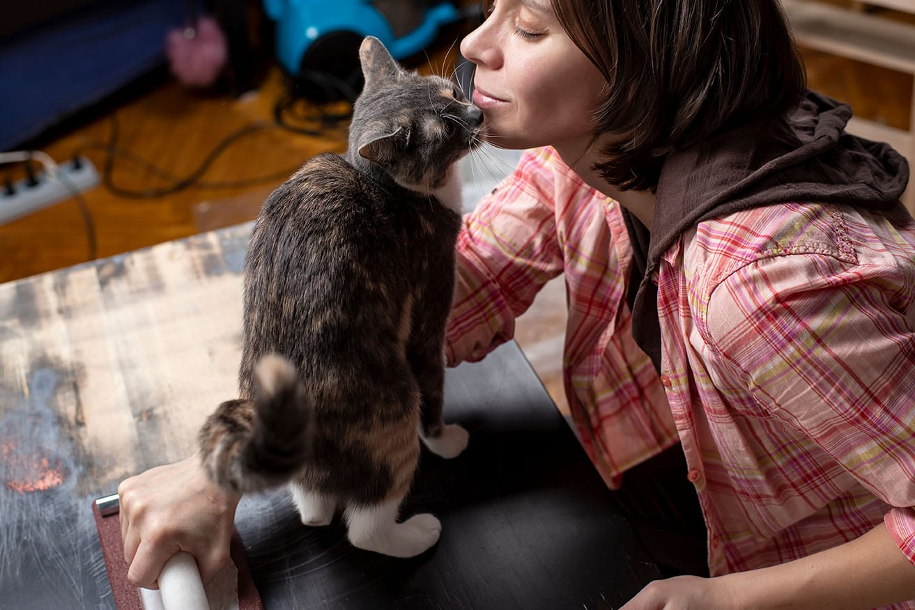 cat smelling woman's chin