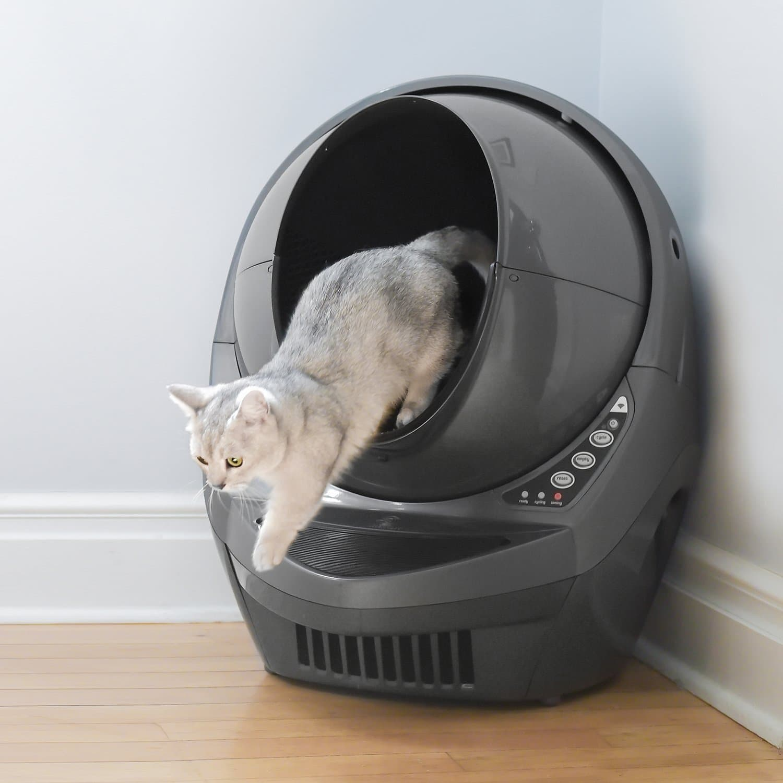 cat stepping out of Litter-Robot 3
