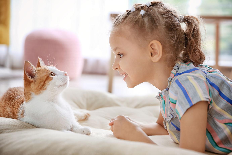 little girl talking to cat