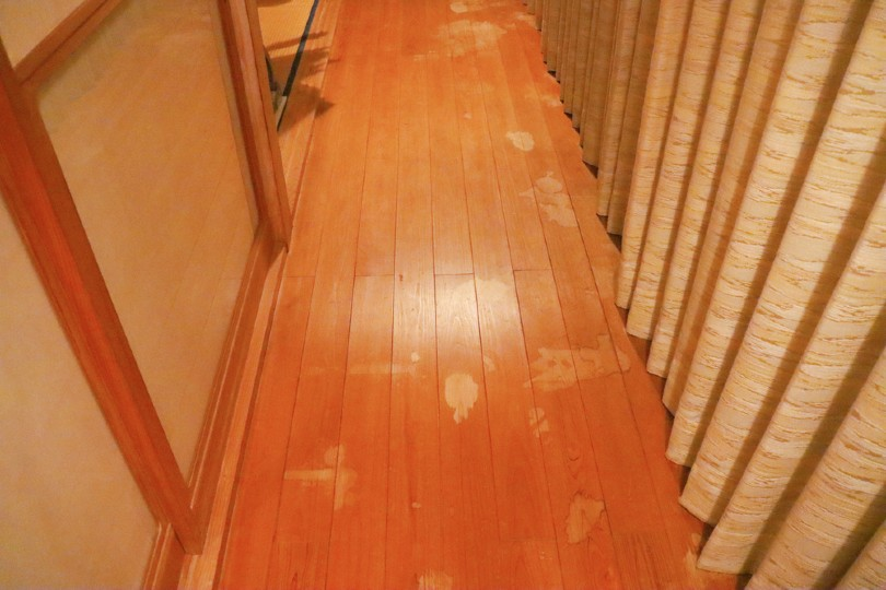 Get Cat Smell Out Of Wood Floors