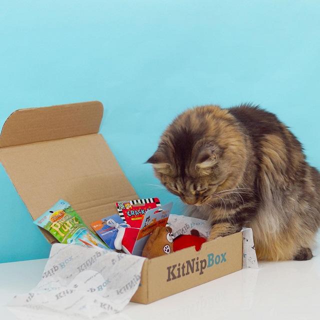 KitNipBox - Monthly Cat Subscription Box