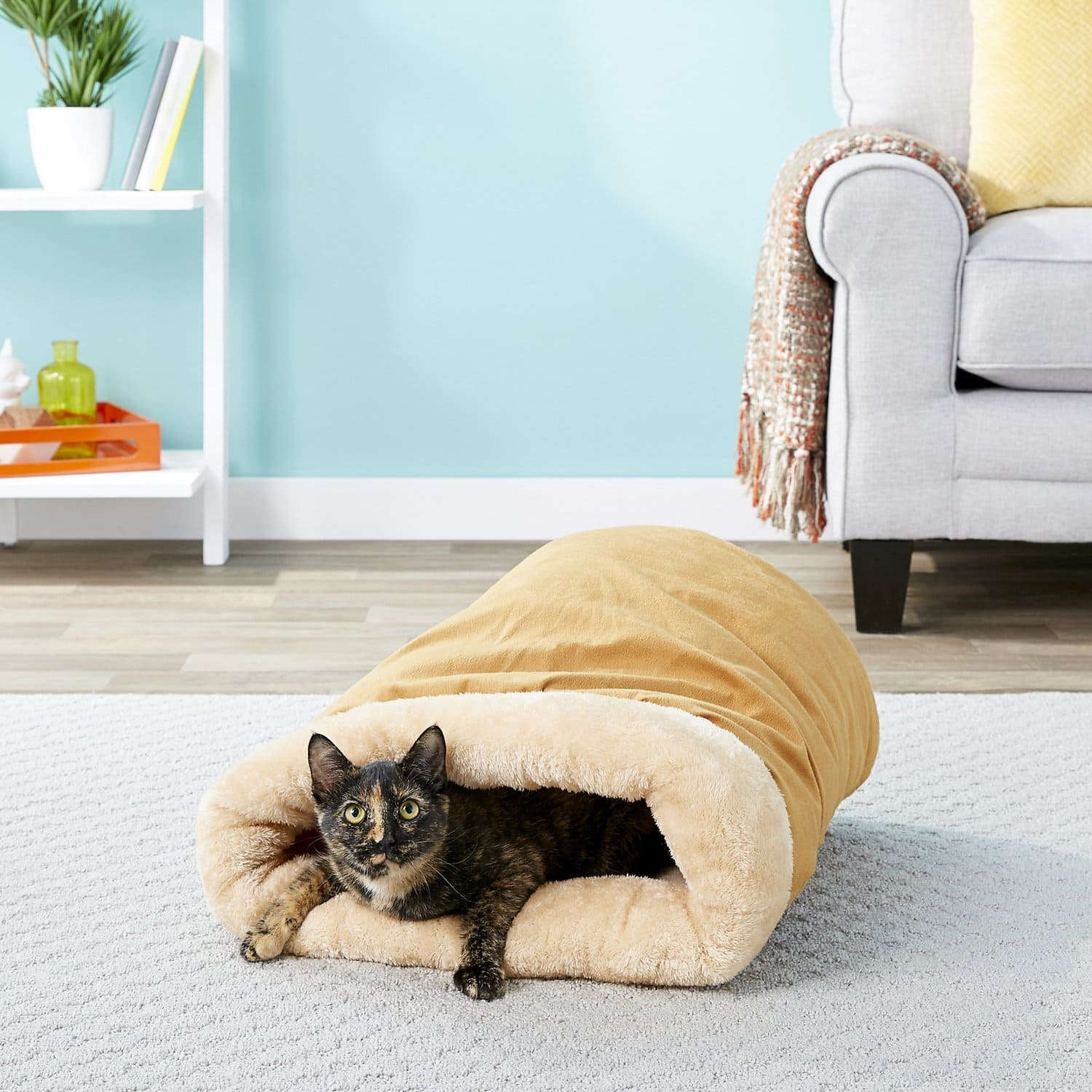 cat in Pet Magasin Self Warming Cat Cave