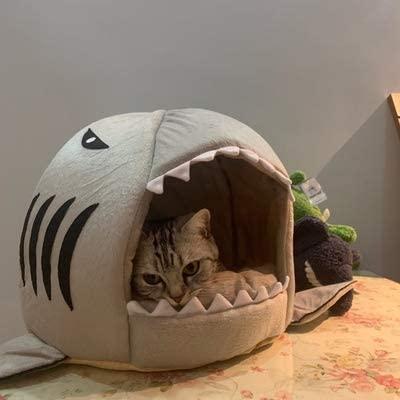 cat inside Easy Store Cat Shark Bed
