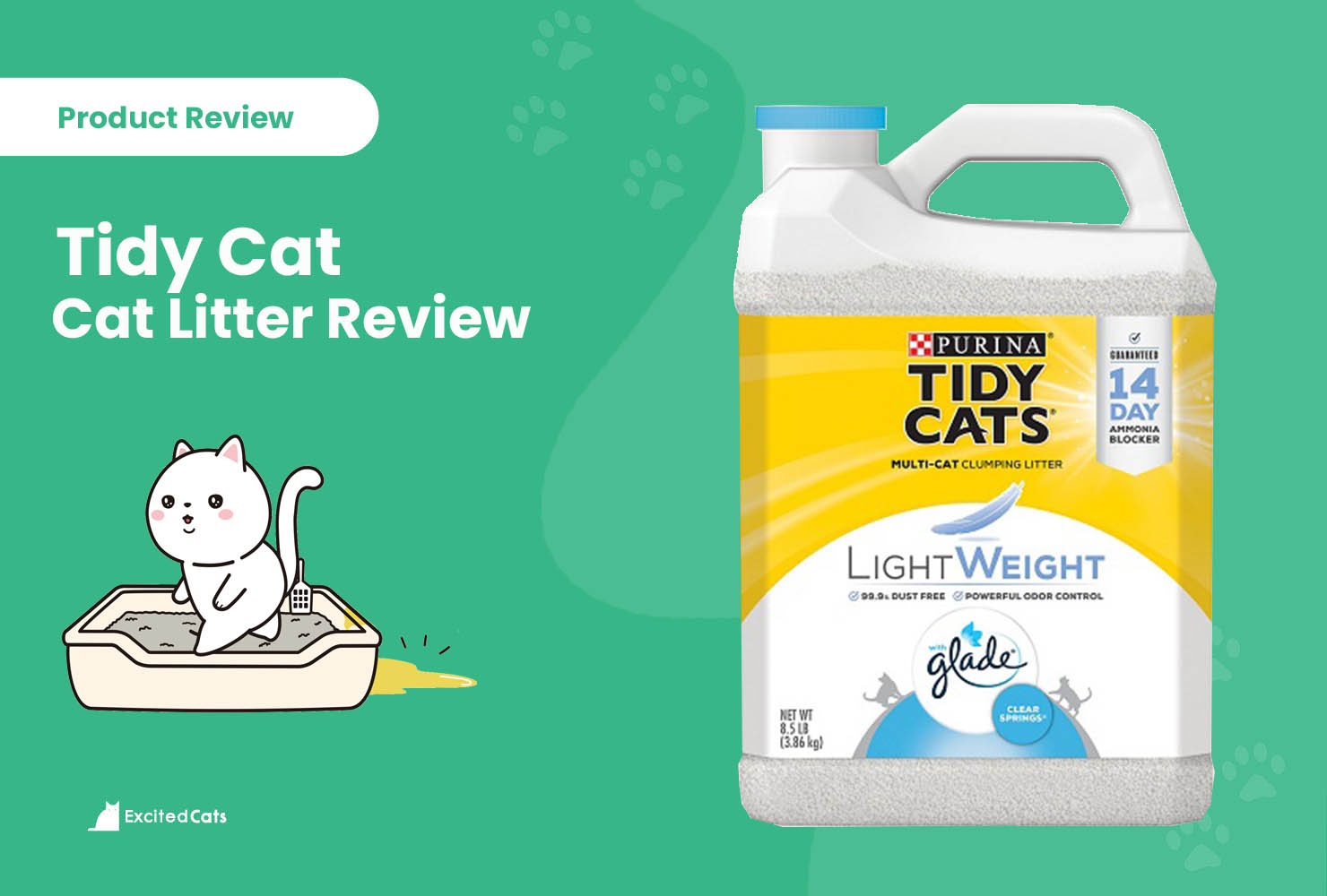 tidy cat review