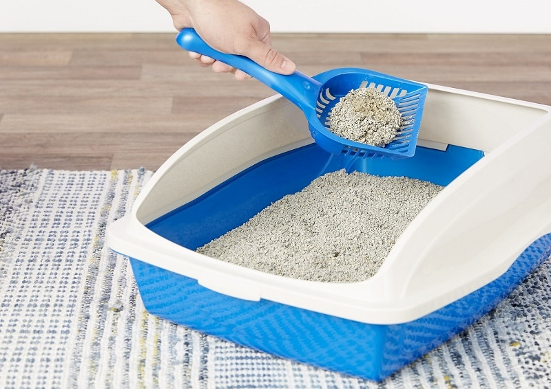 Dr. Elsey's Clumping Clay Cat Litter