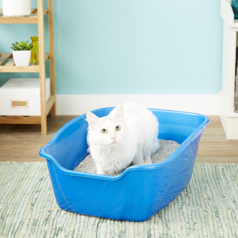 cat in Van Ness High Sides Cat Litter Pan