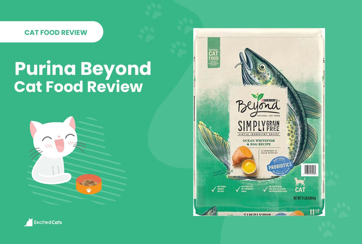 purina beyond review
