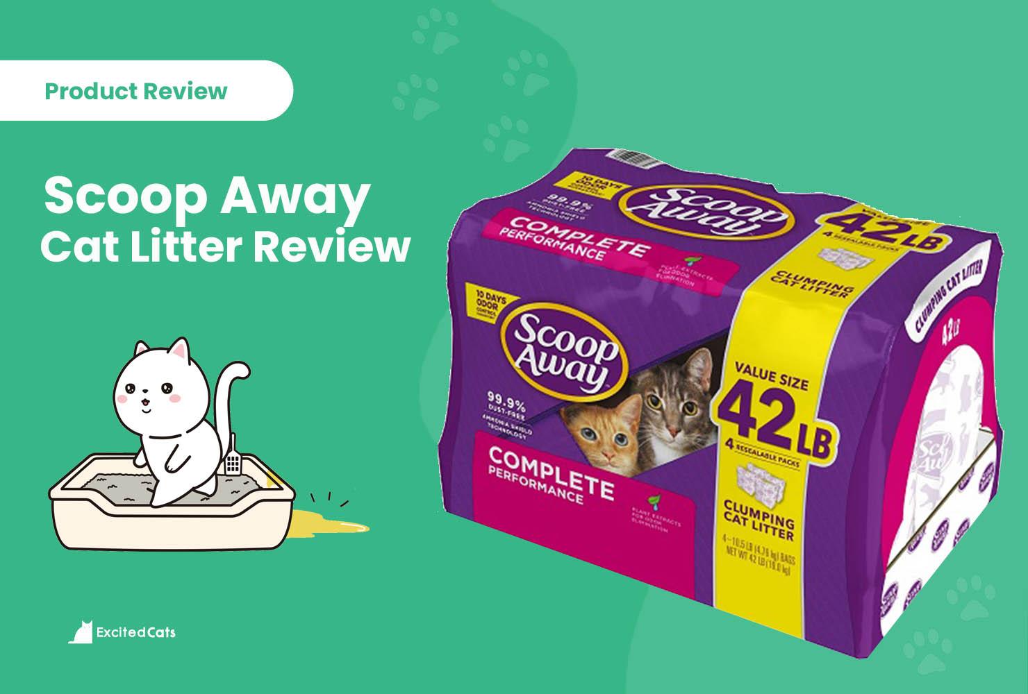https://excitedcats.com/scoop-away-cat-litter-review/