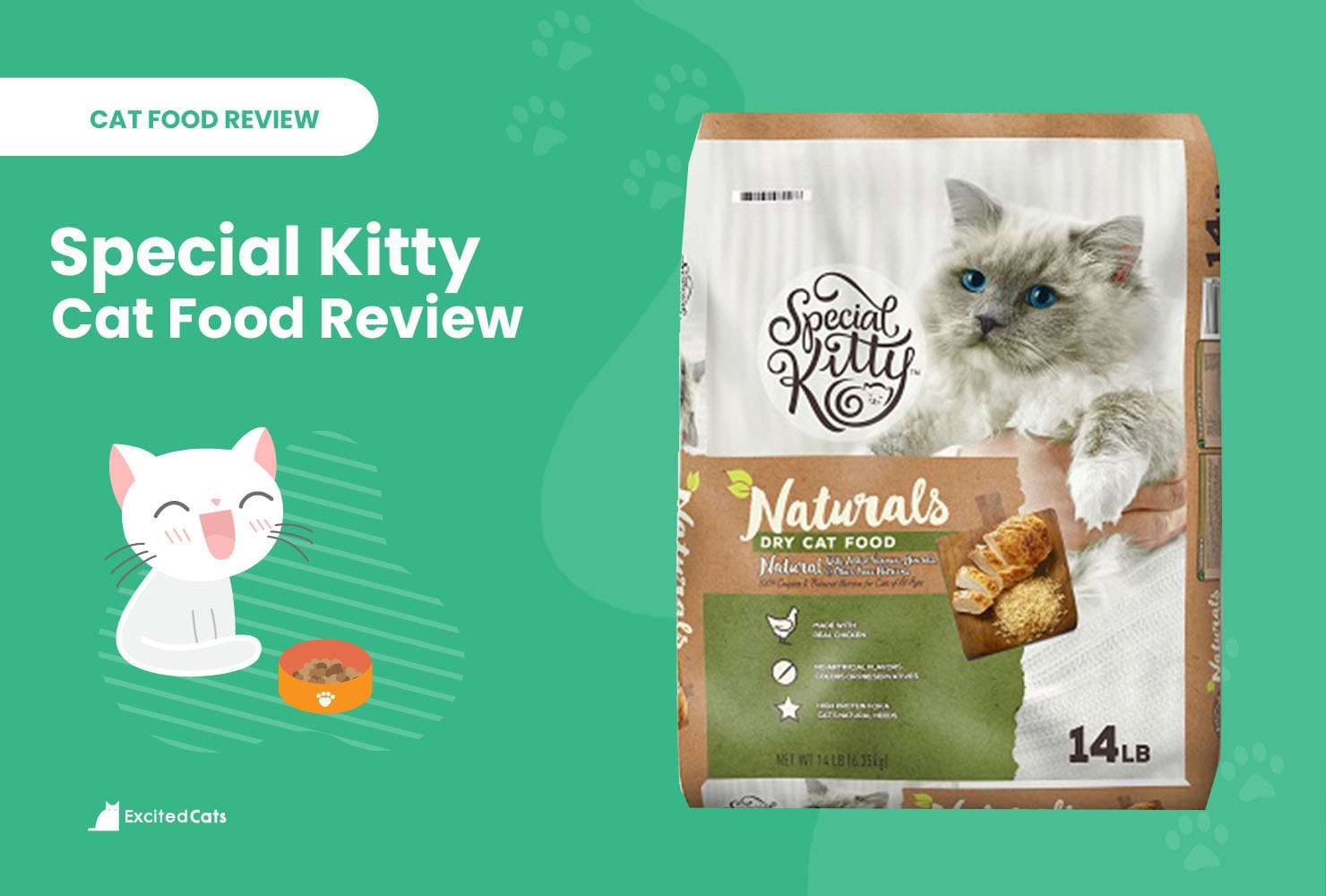 special kitty review