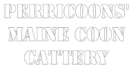 Perricoons' Maine Coon Cattery logo